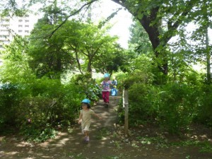緑の中でたくさん走りました。